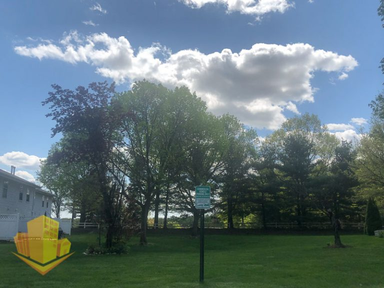 Backyards at Oak Tree Manor